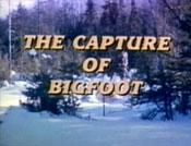CaptureBigfoot1