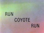 RunCoyoteRun1